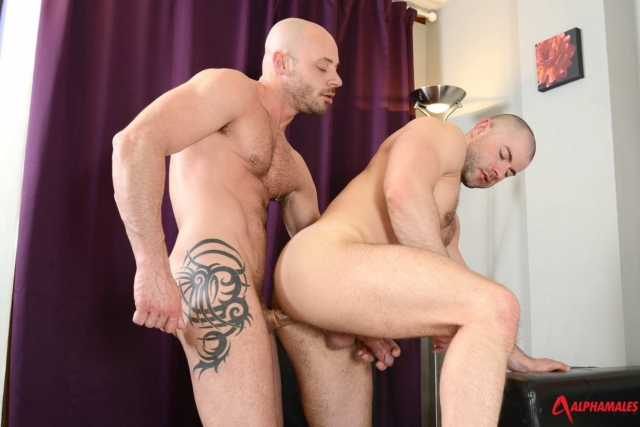 Bruno Fox and Yohan Banks Alphamales gay porn star muscle hunk ass fuck man hole muscle gay sex asshole fucking anal 01 gay porn reviews pics gallery tube video photo - Bruno Fox and Yohan Banks
