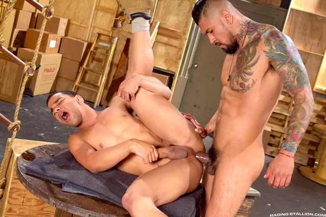 Boomer-Banks-and-Trelino-Raging-Stallion-gay-porn-stars-gay-streaming-porn-movies-gay-video-on-demand-gay-vod-premium-gay-sites-013-male-tube-red-tube-gallery-photo